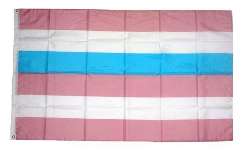 Fahne / Flagge Intersex blau / pink 90 x 150 cm