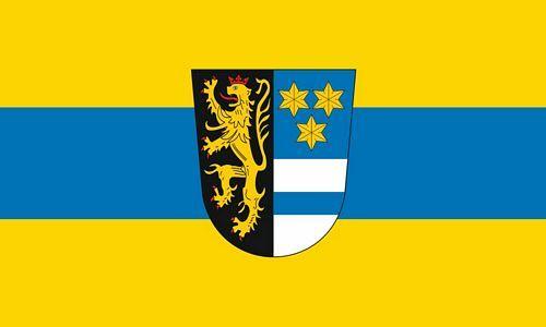 Fahne / Flagge Landkreis Neustadt Waldnaab 90 x 150 cm