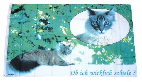 Fahne / Flagge Katze 90 x 150 cm