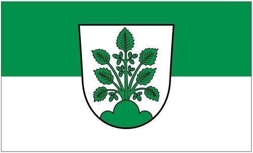 Fahne / Flagge Haslach 90 x 150 cm
