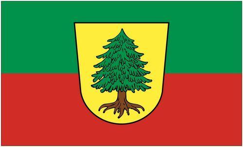 Fahne / Flagge Viechtach 90 x 150 cm