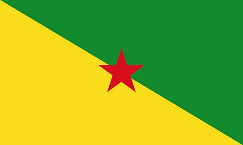 Flagge / Fahne Französisch Guyana Hissflagge 90 x 150 cm