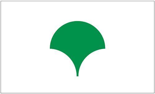 Fahne / Flagge Japan - Metropolregion Tokio 90 x 150 cm