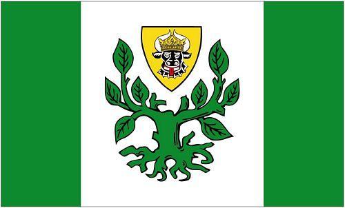 Fahne / Flagge Neubuckow 90 x 150 cm