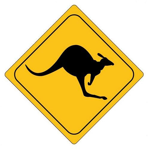 Autoaufkleber Sticker Achtung Känguruh NEU Aufkleber