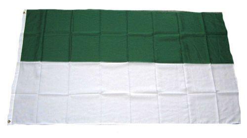 Fahne / Flagge Schützenfest grün / weiß 150 x 250 cm