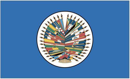 Fahne / Flagge Union Amerikanischer Staaten 90 x 150 cm