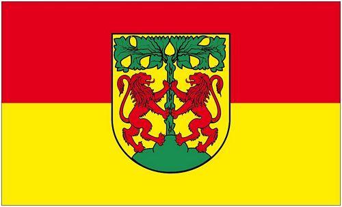 Fahne / Flagge Pirna 90 x 150 cm
