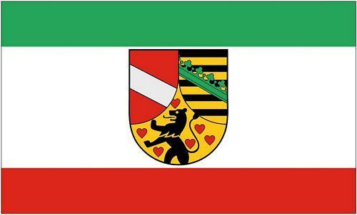 Fahne / Flagge Saale Holzland Kreis 90 x 150 cm