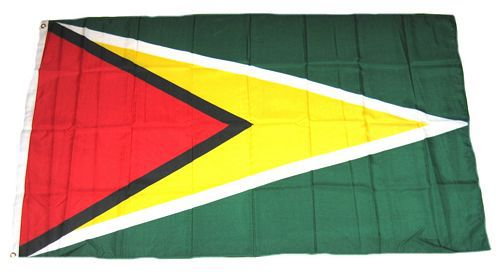 Flagge / Fahne Guyana Hissflagge 90 x 150 cm