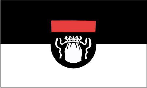Flagge / Fahne Bad Säckingen Hissflagge 90 x 150 cm