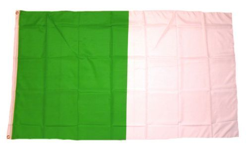Fahne / Flagge Irland - Limerick 90 x 150 cm