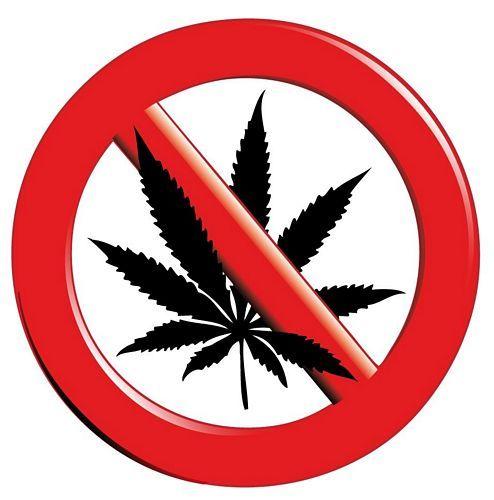 Aufkleber Sticker STOP Cannabis Hanf
