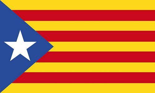 Fahnen Flagge Spanien Katalonien Estelada Groga Digitaldruck 90 x 150 cm