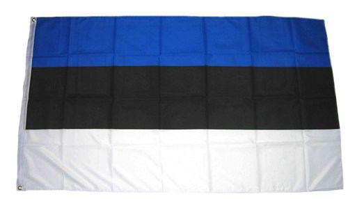 Flagge / Fahne Estland Hissflagge 90 x 150 cm