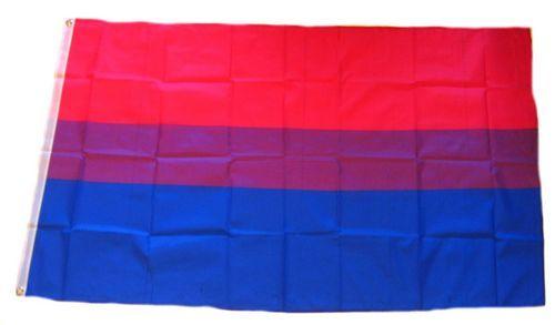 Fahne / Flagge Bi Pride 90 x 150 cm
