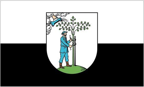 Fahne / Flagge Netzschkau 90 x 150 cm