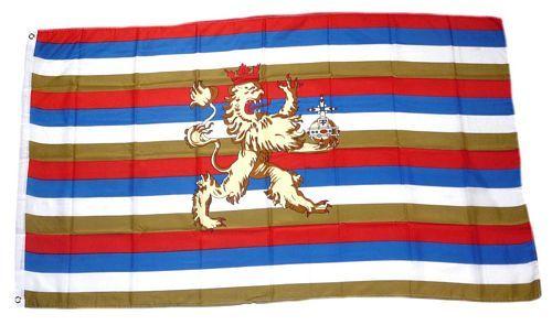Fahne / Flagge Kurpfalz 90 x 150 cm