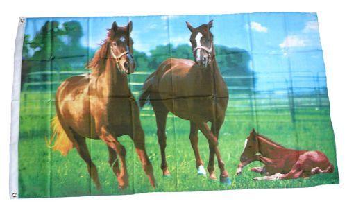 Fahne / Flagge Wilde Pferde 90 x 150 cm