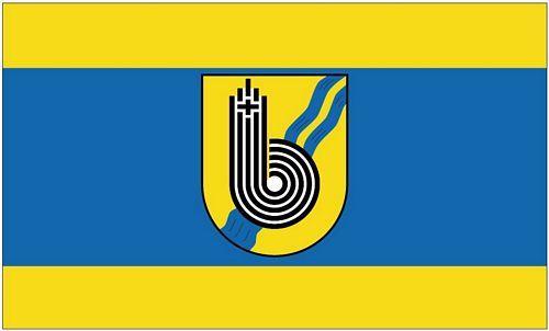 Fahne / Flagge Borchen 90 x 150 cm